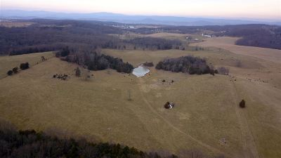 Rockingham County Lots & Land For Sale: 60 Acres North Valley Pike