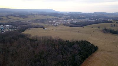 Rockingham County Lots & Land For Sale: 57 Acres North Valley Pike