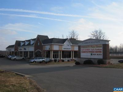Commercial For Sale: 15960 N James Madison Hwy