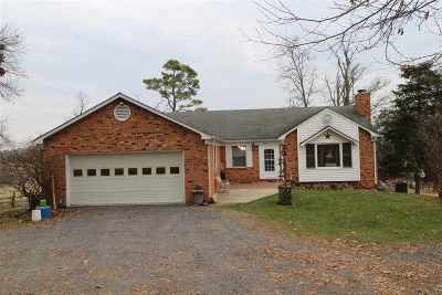 Page County Single Family Home For Sale: 987 Leaksville Rd