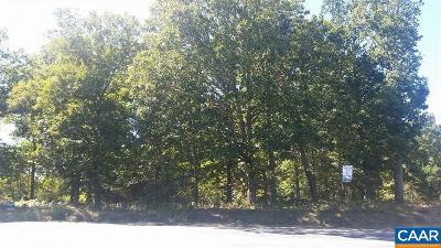 Albemarle County Lots & Land For Sale: 3.7 Free Union Rd