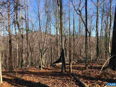 Nelson County Lots & Land For Sale: 1850 Berry Hill Rd