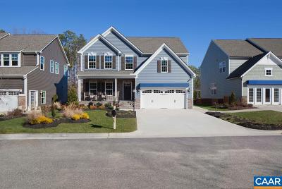 Albemarle County Single Family Home For Sale: 87 Delphi Ln