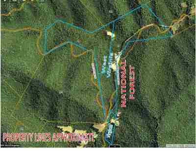 Rockingham County Lots & Land For Sale: Branch Mountain Ln