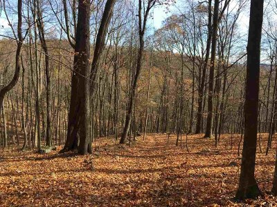Broadway Lots & Land For Sale: Runions Creek Rd
