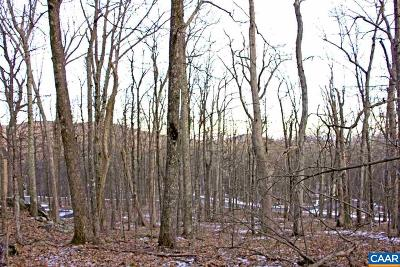 Nelson County Lots & Land For Sale: 132 Warrior Run