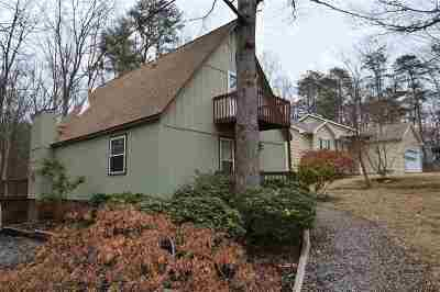 Single Family Home For Sale: 358 Alleghany Dr