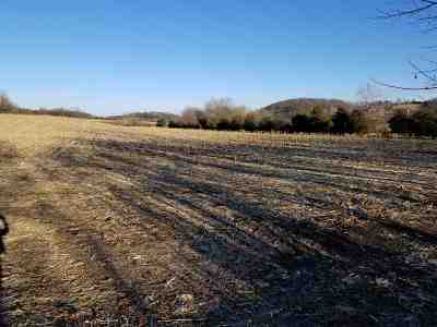 Augusta County Lots & Land For Sale: 55 Acres Lee Hwy