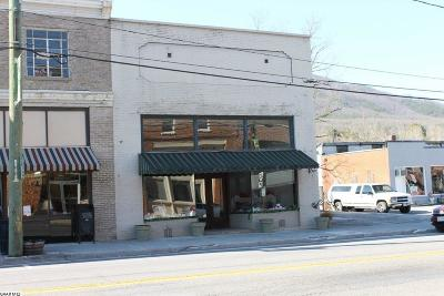Commercial For Sale: 19799 Main St