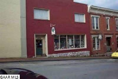 Commercial For Sale: 14 W Washington St