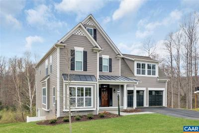 Albemarle County Single Family Home For Sale: 747 Concho Ln