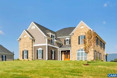Charlottesville Single Family Home For Sale: 66 Bleeker St