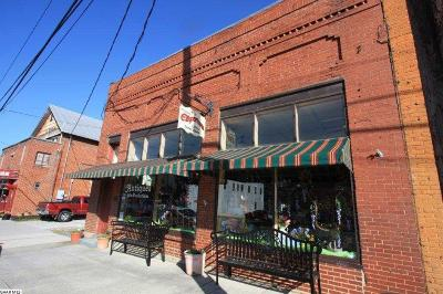 Commercial For Sale: 19762 Main St