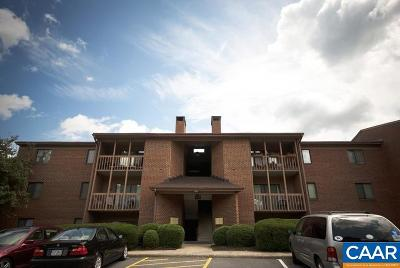 Albemarle County  Timeshare For Sale: 143 Green Turtle Ln #02
