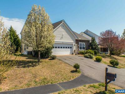 Charlottesville Single Family Home For Sale: 378 Bayberry Way