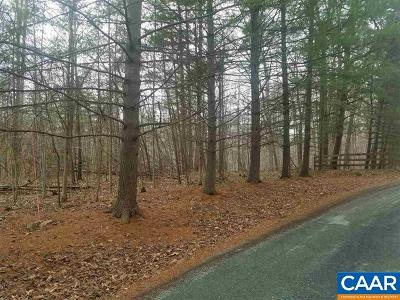 Albemarle County Lots & Land For Sale: Stony Point Rd