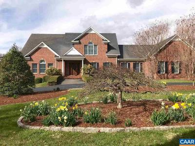 Albemarle County Single Family Home For Sale: 960 Turner Mountain Rd