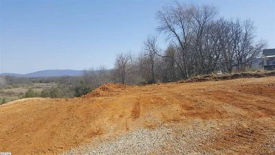 Augusta County Single Family Home For Sale: Lot 13 Bowmans Run Dr