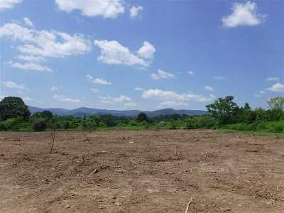 Shenandoah County Lots & Land For Sale: 302 S Stoneburner Rd