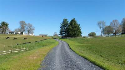 Bridgewater Lots & Land For Sale: Warm Springs Pike