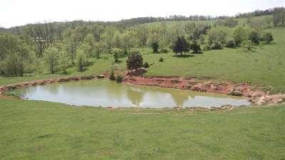 Verona Lots & Land For Sale: 97 Acres Lee Hwy