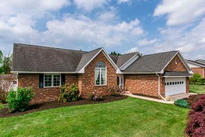 Shenandoah County Single Family Home For Sale: 267 Clicks Ln