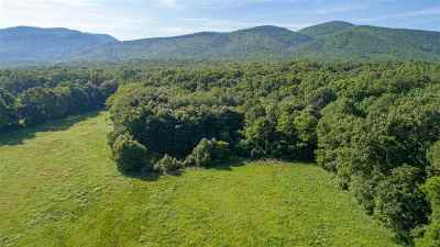 Rockingham County Farm For Sale: 9107 South East Side Hwy