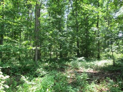 Lots & Land For Sale: Yagers Rd