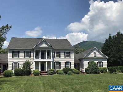 Nelson County Single Family Home For Sale: 825 Rockfish Valley Hwy
