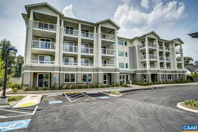 Albemarle County  Timeshare For Sale: 1425 Trailside Ct #205 The