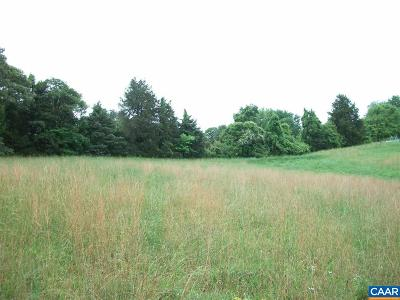 Lots & Land For Sale: 40a Buck Mountain Rd