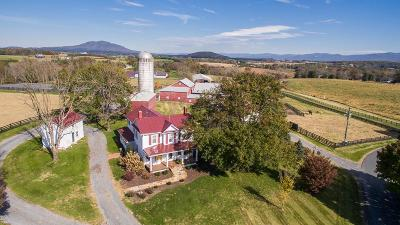 Rockingham County Farm For Sale: 6711 Stoney Lick Rd