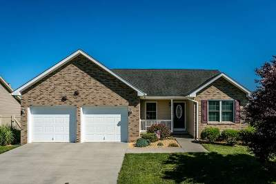 Single Family Home For Sale: 3097 Declaration Dr