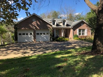 Single Family Home For Sale: 97 Murchinson Ln