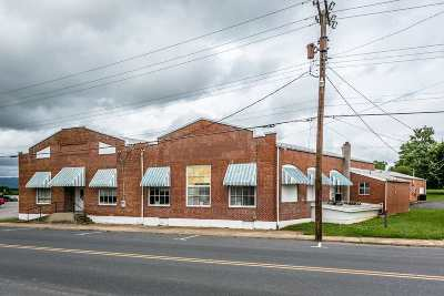 Elkton Commercial For Sale: 154 West Spotswood Ave