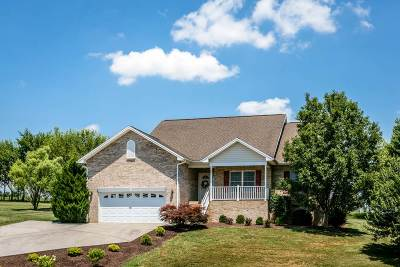 Rockingham County Single Family Home For Sale: 241 Bush Dr