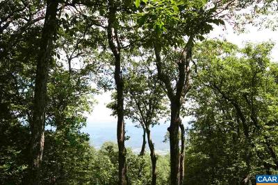 Nelson County Lots & Land For Sale: 256 Pedlars Edge Dr