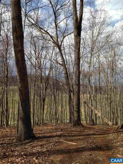 Albemarle County Lots & Land For Sale: D-05 Edge Valley Rd