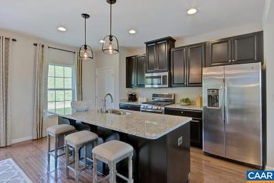 Albemarle County Townhome For Sale: 1aa Pocoson Wood Ct