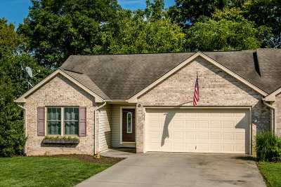 Townhome For Sale: 237 Windermere Dr