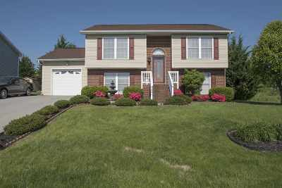 Harrisonburg Single Family Home For Sale: 1441 Stonechris Dr