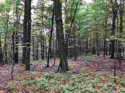 Augusta County Lots & Land For Sale: Stribling Springs Rd