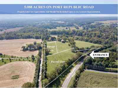 Rockingham County Lots & Land For Sale: Port Republic Rd