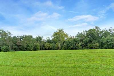 Lots & Land For Sale: Lot 17 Caddice Ct