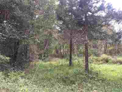Augusta County Lots & Land For Sale: Tbd E East Side Hwy