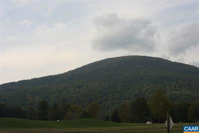 Nelson County Lots & Land For Sale: 489 Far Knob Climb
