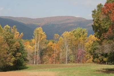 Albemarle County Lots & Land For Sale: 123 Jenevan Ln