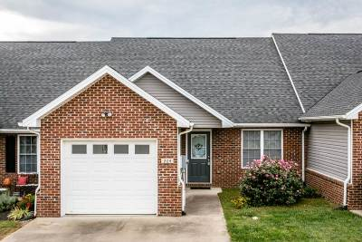 Harrisonburg, Mcgaheysville, Elkton, Bridgewater, Broadway Townhome For Sale: 204 Tara Dawn Cir