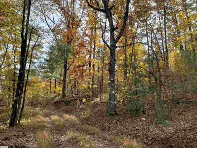 Augusta County Lots & Land For Sale: 288 Stokesville Rd