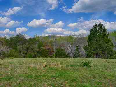 Lots & Land For Sale: 2646 Boonesville Rd